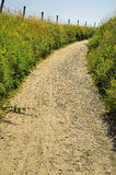 Summer path Royalty Free Stock Photography