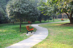 Summer path and bench. In the park Royalty Free Stock Photo