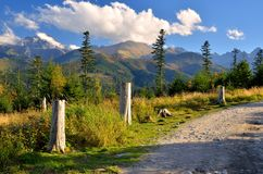 Summer path in mountains. Pleasant trail leading to Rusinowa Glade, one of the most beautiful place in Polish Tatra Mountains royalty free stock images