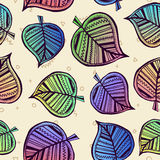 Summer pattern with color leaf nature background Royalty Free Stock Photography