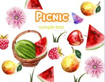 Summer pattern fruits picnic Vector. watercolor backgrounds Royalty Free Illustration