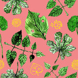 Summer pattern.green leaves.natural wallpaper.floral pattern.botanical pattern.grape leaves.pink background. Pink background with green leaves and yellow Vector Illustration
