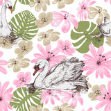 Summer pattern. Swans and tropical flowers Royalty Free Stock Photography