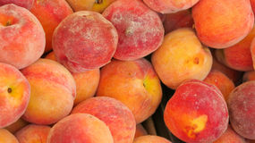 Summer Peach. Sweet summer peaches at the farmers market Stock Images