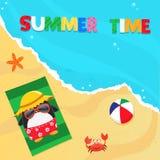 Summer Penguin Royalty Free Stock Photos