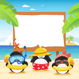 Summer Penguins With Billboard Royalty Free Stock Images