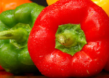 Summer Peppers Stock Images