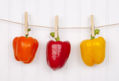 Summer Peppers Peppers Hanging from a Clothesline Royalty Free Stock Images
