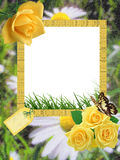 Summer photo-frame Stock Image