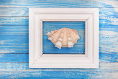 Summer photo frame with sea shell Stock Photo
