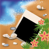 Summer photoframe with flowers and palm-tree Royalty Free Stock Photography