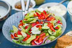 Summer Picnic. Photograph of a salad bowl placed on a summer picnic table Royalty Free Stock Photography