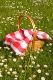 Summer picnic. Picnic basket filled of food on grass Royalty Free Stock Photo