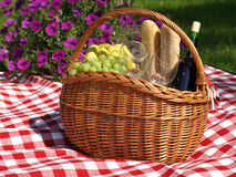 Summer picnic Stock Images