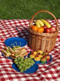 Summer picnic. On fresh air, fruits and sandwiches Royalty Free Stock Photo