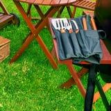 Summer Picnic in the Backyard Stock Photos