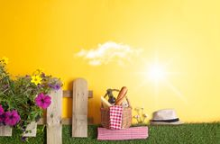 Summer garden picnic background Stock Image