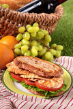 Summer picnic basket griddle chicken salad sandwich. Picnic basket griddle chicken salad sandwich Stock Photography