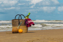 Summer picnic at the beach. With healthy fruits and wine in the sunny day royalty free stock photo