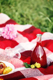 Summer Picnic Concept. Food on Plaid. Royalty Free Stock Photos