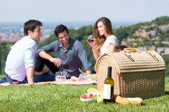Summer Picnic with Friends Royalty Free Stock Photo