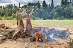 Summer picnic on the fringe of the forest. On a fire two carcasses of rams are fried. Summer picnic on the fringe of the forest in the afternoon. On a fire two stock photo