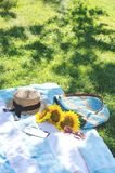 Summer picnic on the green grass with bright accessories. Summer mood stock photos
