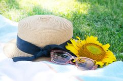 Summer picnic on the green grass with bright accessories. Summer mood stock photography