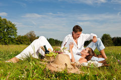 Summer picnic - Happy couple in meadow Stock Images