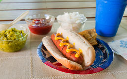 Summer picnic hot dog Royalty Free Stock Image
