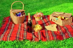 Summer Picnic on the Lawn Stock Image