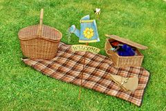 Summer Picnic on the Lawn Royalty Free Stock Image