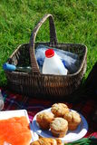 Summer picnic Stock Image
