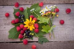 Summer picnic and raspberries Stock Image