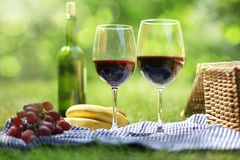 Summer picnic setting. Picnic setting with red wine glasses bottle and picnic hamper basket Stock Images