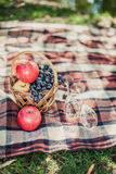Summer picnic. Setting with wine, fruits on the blanket Stock Image