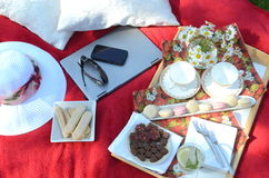 A summer picnic - A tray of food, drinks, glass of minty lemonade in a crystal stem glass on a picnic tray, on a red blanket. Summer Picnic in the garden Stock Photo