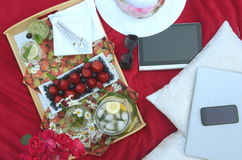A summer picnic - A tray of food, drinks, glass of minty lemonade in a crystal stem glass on a picnic tray, on a red blanket. Summer Picnic in the garden Royalty Free Stock Image