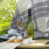 Summer Picnic With Wine Royalty Free Stock Photos
