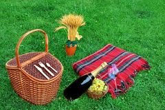 Summer Picnic With Wine On The Lawn Concept Stock Images