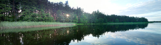 Summer picture a quiet lake Royalty Free Stock Photography