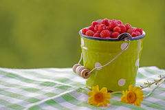 A summer picture with wild strawberries and flowers. stock images