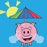 Summer pig Color Royalty Free Stock Photography