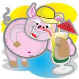 Summer pig Stock Photography