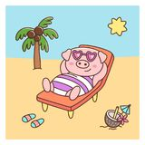 Summer pig in swimsuit and glasses, with coconut cocktail, lays on a deckchair on the beach. It can be used for sticker, patch, phone case, poster, t-shirt, mug Royalty Free Stock Photo