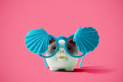 Summer piggy bank with fashion shellfish sunglasses on pink back Royalty Free Stock Photography