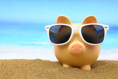 Summer piggy bank Stock Photos
