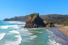 Summer at Piha beach with Lion Rock, New Zealand royalty free stock photo