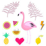 Summer pink flamingo clipart icon set. Vector illustration. Royalty Free Stock Photo