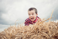 Summer play. Boy calling from heap of hay Stock Photography